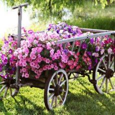 kültéri virágtartók (5)